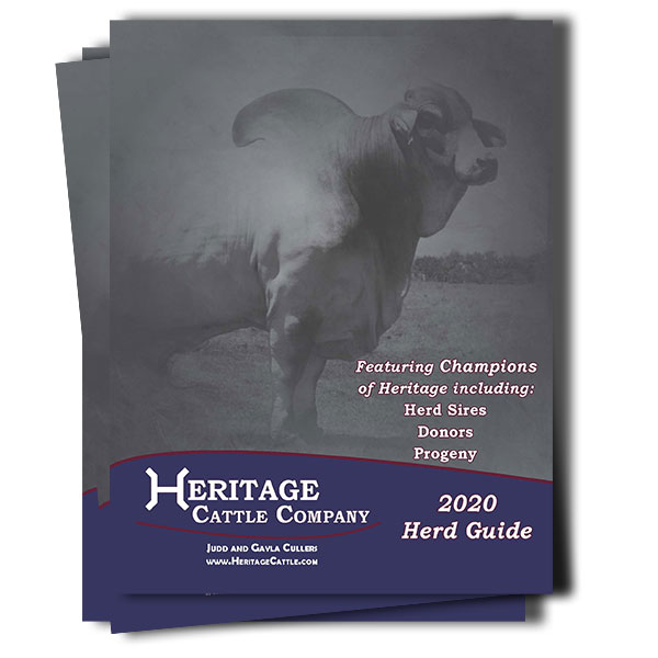 Heritage Cattle Company 2020 Brahman Herd Guide